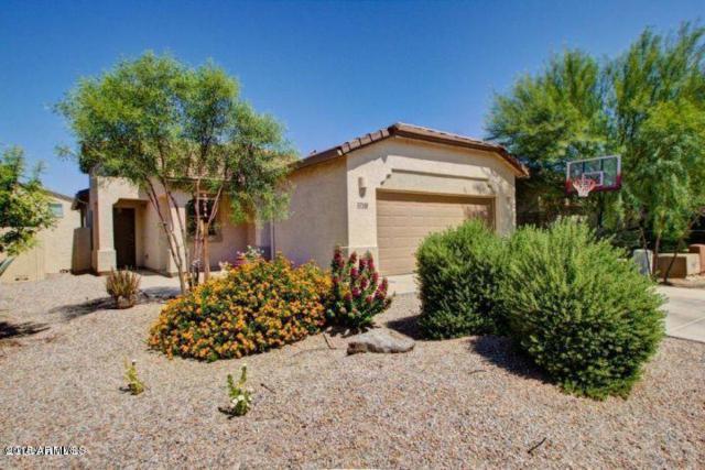 37148 W Mondragone Lane, Maricopa, AZ 85138 (MLS #5665224) :: The Daniel Montez Real Estate Group
