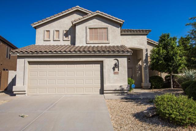 16009 S 18TH Drive, Phoenix, AZ 85045 (MLS #5665225) :: The Daniel Montez Real Estate Group