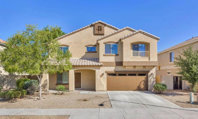 17372 W Hilton Avenue, Goodyear, AZ 85338 (MLS #5665241) :: The Daniel Montez Real Estate Group