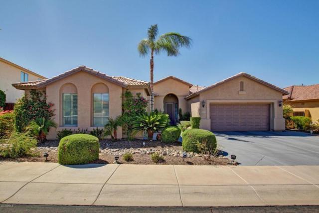 9814 S 26TH Lane, Phoenix, AZ 85041 (MLS #5665242) :: The Daniel Montez Real Estate Group