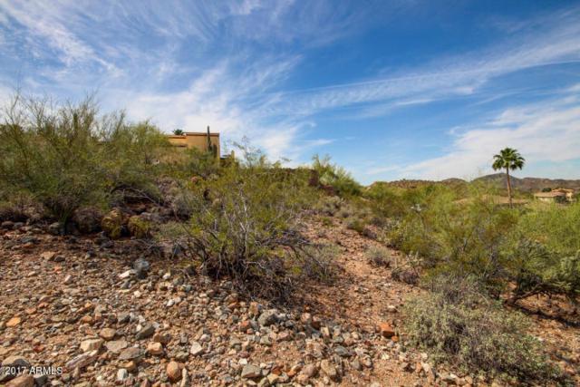 13445 N 16TH Place, Phoenix, AZ 85022 (MLS #5665279) :: The Daniel Montez Real Estate Group