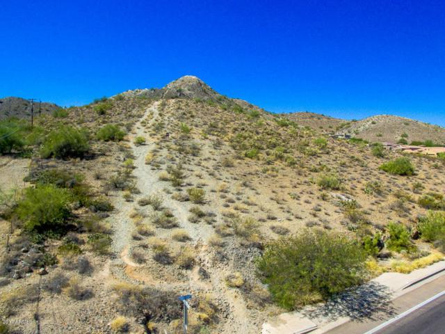 13804 N 28TH Street, Phoenix, AZ 85032 (MLS #5665291) :: The Daniel Montez Real Estate Group