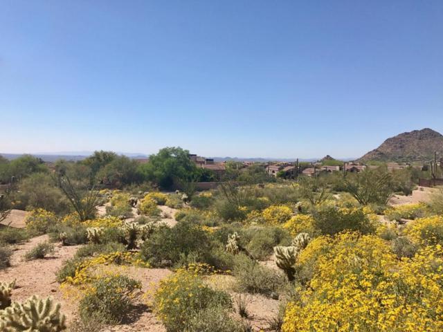 25180 N 107TH Way, Scottsdale, AZ 85255 (MLS #5665312) :: Occasio Realty