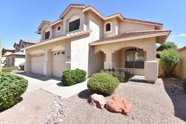 19617 N 64TH Lane, Glendale, AZ 85308 (MLS #5665626) :: Rodney Barnes Real Estate