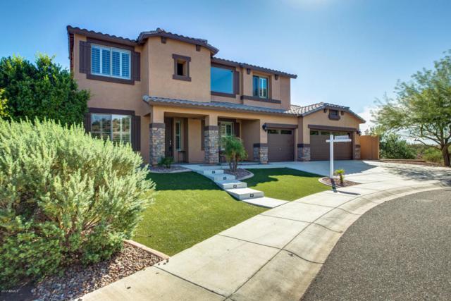 6635 W Bent Tree Drive, Phoenix, AZ 85083 (MLS #5666174) :: Sibbach Team - Realty One Group