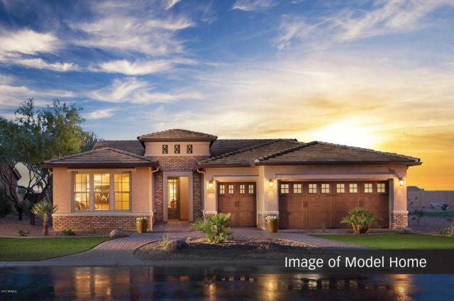 4483 W White Horse Boulevard, Eloy, AZ 85131 (MLS #5666450) :: Yost Realty Group at RE/MAX Casa Grande