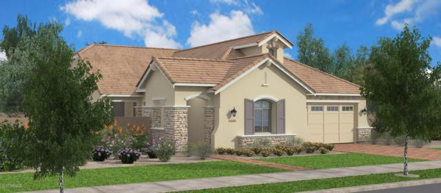 4348 E Ronald Street, Gilbert, AZ 85295 (MLS #5666927) :: The Wehner Group