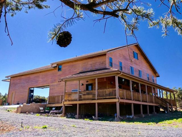 2355 Tomcat Circle, Overgaard, AZ 85933 (MLS #5666988) :: Santizo Realty Group