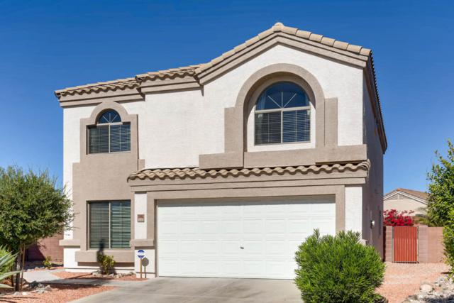 23982 W Lasso Lane, Buckeye, AZ 85326 (MLS #5667389) :: Occasio Realty