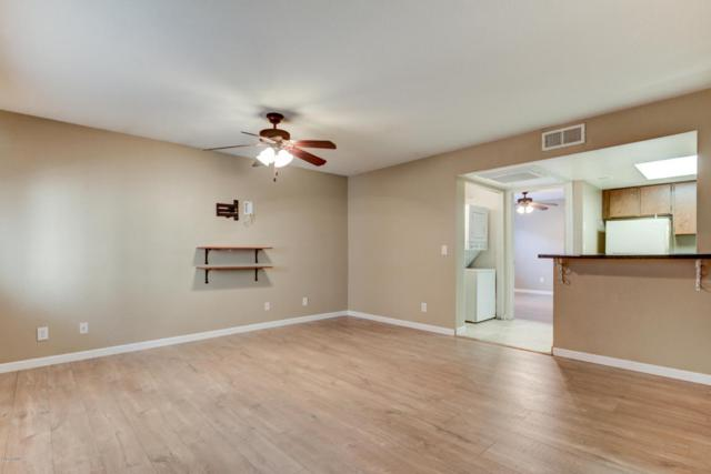 700 W University Drive #256, Tempe, AZ 85281 (MLS #5667468) :: 10X Homes