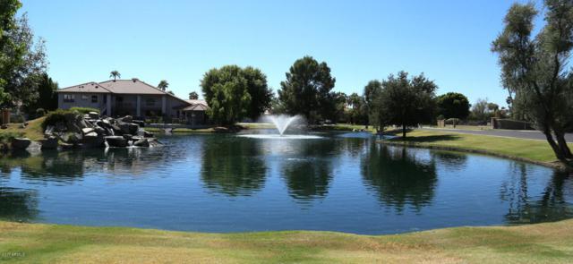 5805 W Del Lago Circle, Glendale, AZ 85308 (MLS #5667686) :: Rodney Barnes Real Estate