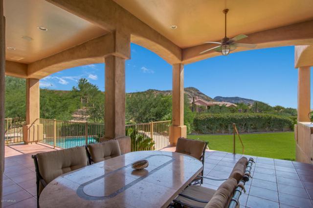 14319 E Coyote Road, Scottsdale, AZ 85259 (MLS #5667754) :: Occasio Realty