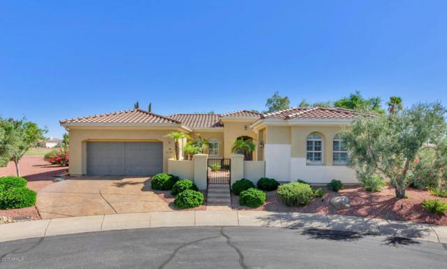 12804 W Santa Ynez Drive, Sun City West, AZ 85375 (MLS #5667973) :: Desert Home Premier