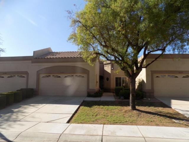 8505 W Oraibi Drive, Peoria, AZ 85382 (MLS #5668056) :: Desert Home Premier