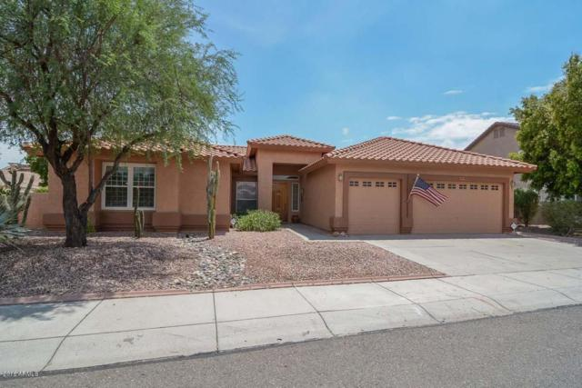 5309 W Mohawk Lane, Glendale, AZ 85308 (MLS #5668191) :: Essential Properties, Inc.
