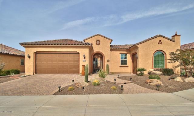 27042 W Oraibi Drive, Buckeye, AZ 85396 (MLS #5668332) :: Desert Home Premier