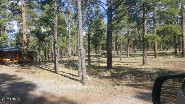 Lot 2 Crosby Acres Forest, Greer, AZ 85927 (MLS #5668674) :: Brett Tanner Home Selling Team