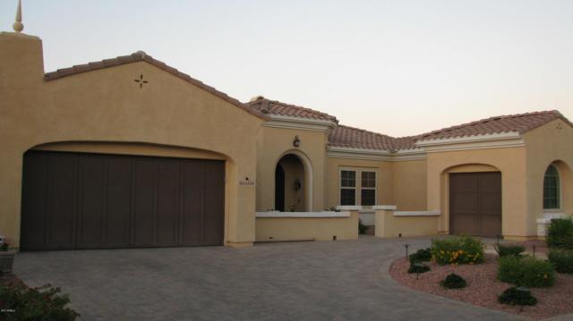 13114 W Quinto Drive, Sun City West, AZ 85375 (MLS #5668685) :: Desert Home Premier