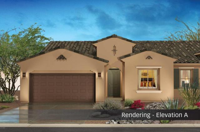 4784 W Gulch Drive, Eloy, AZ 85131 (MLS #5669175) :: Yost Realty Group at RE/MAX Casa Grande