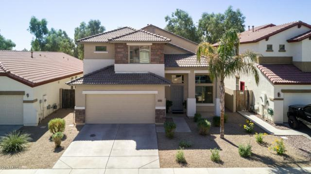 17237 W Lundberg Street, Surprise, AZ 85388 (MLS #5669262) :: Occasio Realty