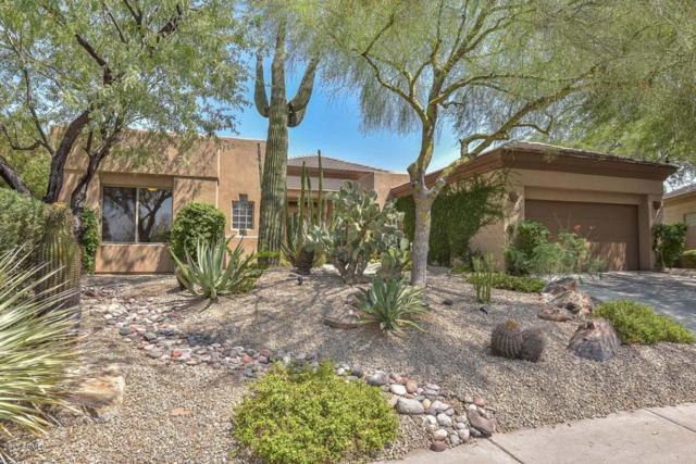 7192 E Thirsty Cactus Lane, Scottsdale, AZ 85266 (MLS #5669318) :: Desert Home Premier