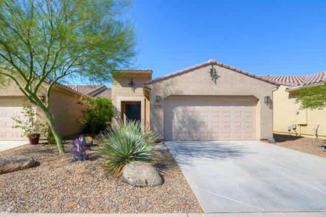 4962 W Posse Drive, Eloy, AZ 85131 (MLS #5669489) :: Yost Realty Group at RE/MAX Casa Grande