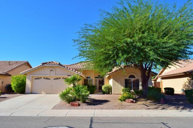 19832 N 87TH Drive, Peoria, AZ 85382 (MLS #5669532) :: Desert Home Premier