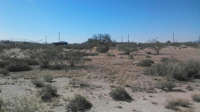 17725 E Cheryl Lane, Florence, AZ 85132 (MLS #5669596) :: My Home Group