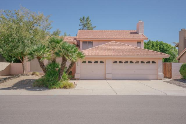 19419 N 67TH Drive, Glendale, AZ 85308 (MLS #5669923) :: Essential Properties, Inc.