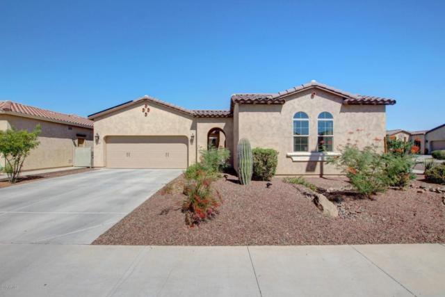 17808 W Cedarwood Lane, Goodyear, AZ 85338 (MLS #5670141) :: Occasio Realty