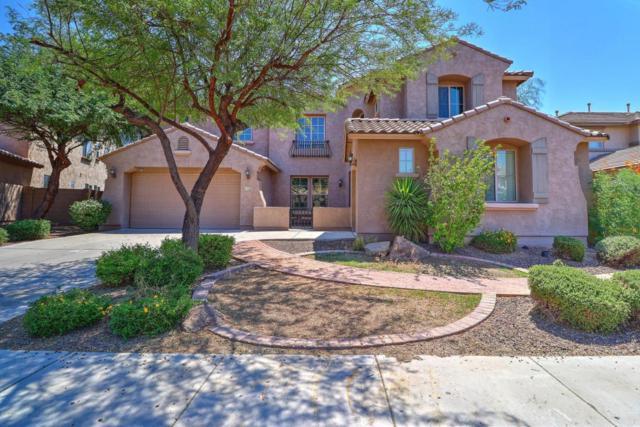 4929 W Marcus Drive, Phoenix, AZ 85083 (MLS #5670221) :: The Laughton Team