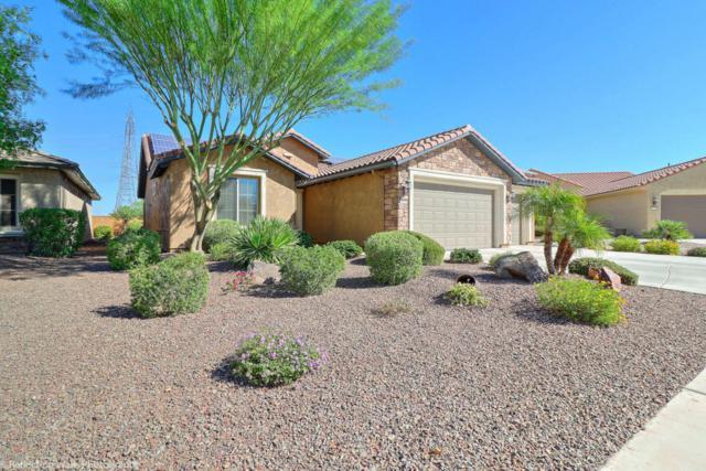 26742 W Ross Avenue, Buckeye, AZ 85396 (MLS #5670380) :: Desert Home Premier