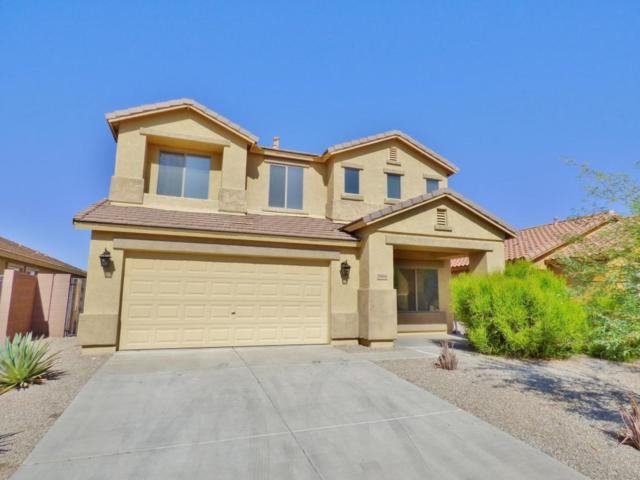 3988 N 294TH Lane, Buckeye, AZ 85396 (MLS #5670392) :: The Everest Team at My Home Group