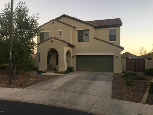 29556 N 68TH Drive, Peoria, AZ 85383 (MLS #5670774) :: The Laughton Team