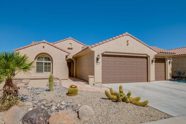 26454 W Potter Drive, Buckeye, AZ 85396 (MLS #5671068) :: Desert Home Premier