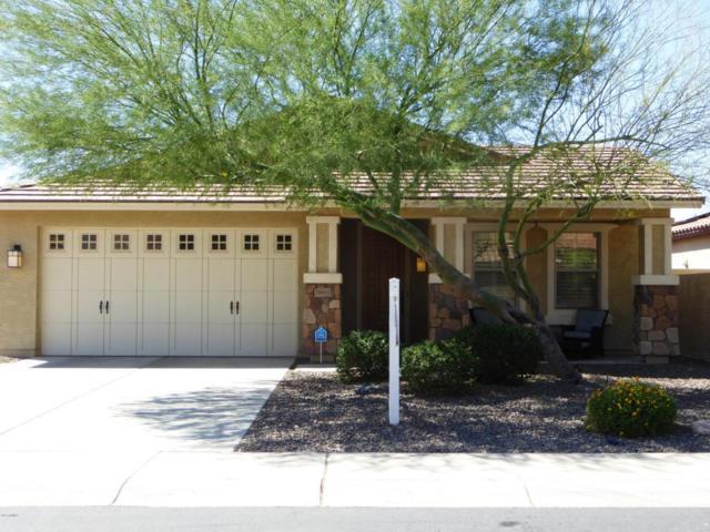 29602 N 69TH Lane, Peoria, AZ 85383 (MLS #5671239) :: The Laughton Team