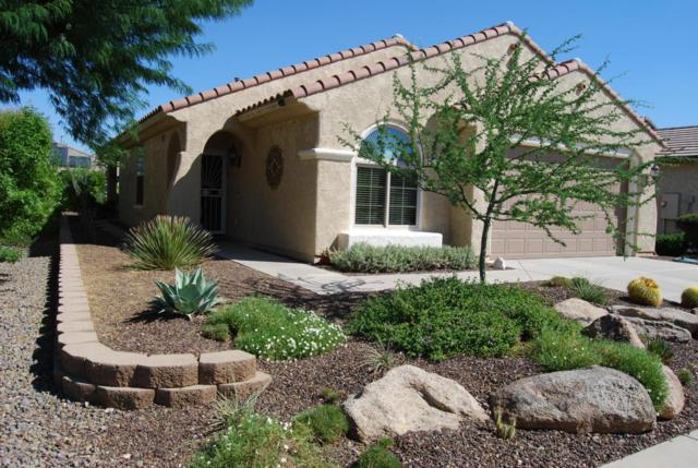27008 W Tonopah Drive, Buckeye, AZ 85396 (MLS #5671263) :: Desert Home Premier