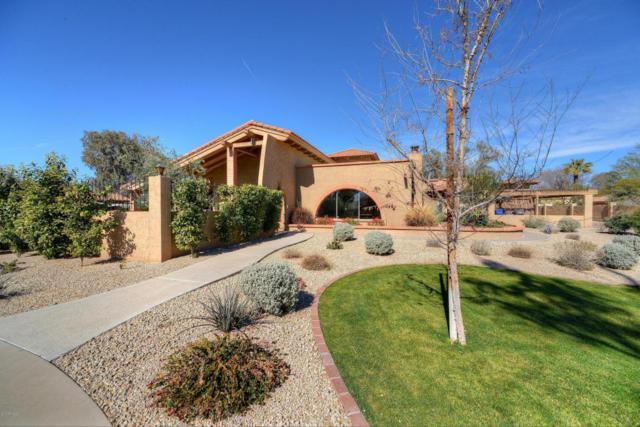 6710 E Fanfol Drive, Paradise Valley, AZ 85253 (MLS #5671313) :: Occasio Realty