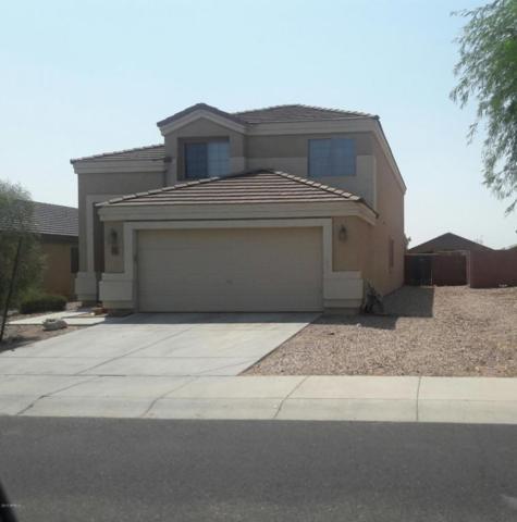 21764 W Renegade Street, Buckeye, AZ 85326 (MLS #5671335) :: Desert Home Premier
