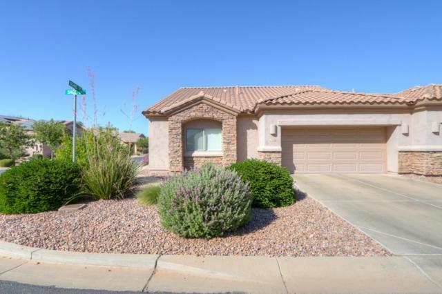 1526 E Sage Drive, Casa Grande, AZ 85122 (MLS #5671561) :: Occasio Realty