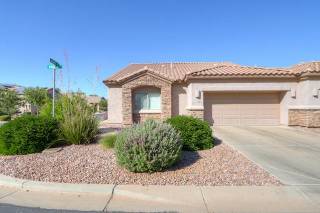 1526 E Sage Drive, Casa Grande, AZ 85122 (MLS #5671561) :: Kepple Real Estate Group