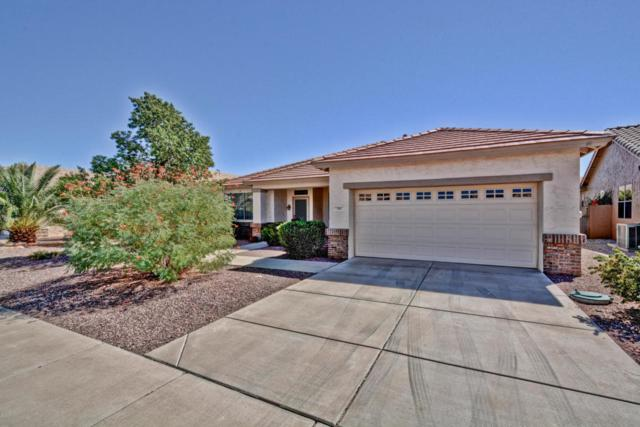 17687 N Coconino Drive, Surprise, AZ 85374 (MLS #5671603) :: Essential Properties, Inc.