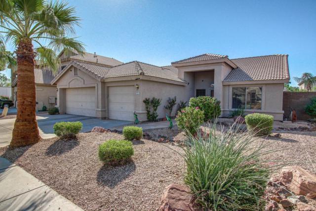 7911 W Hilton Avenue, Phoenix, AZ 85043 (MLS #5671792) :: Cambridge Properties