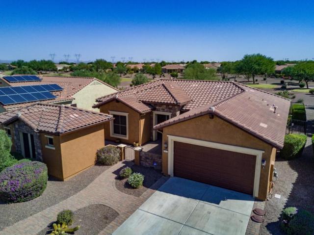 20471 N 264TH Avenue, Buckeye, AZ 85396 (MLS #5671794) :: Desert Home Premier