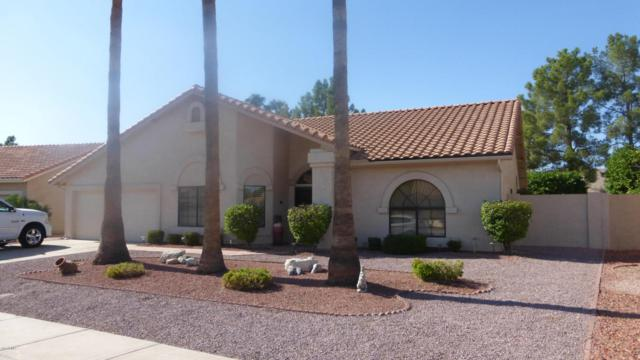 9716 W Escuda Drive, Peoria, AZ 85382 (MLS #5671799) :: Desert Home Premier