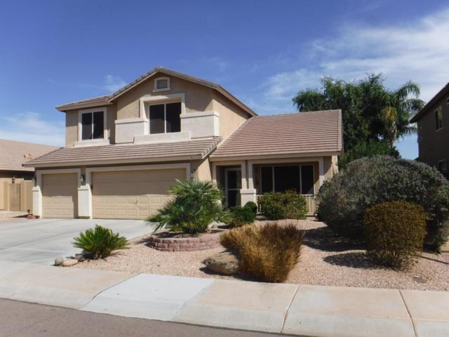 20489 N 79TH Avenue, Peoria, AZ 85382 (MLS #5672062) :: The Laughton Team