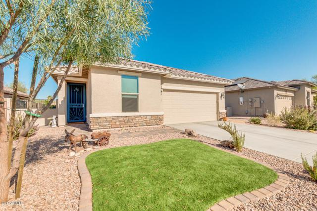 22816 W Moonlight Path, Buckeye, AZ 85326 (MLS #5672207) :: Desert Home Premier