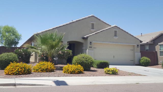 18635 W Lupine Avenue, Goodyear, AZ 85338 (MLS #5672297) :: Kortright Group - West USA Realty