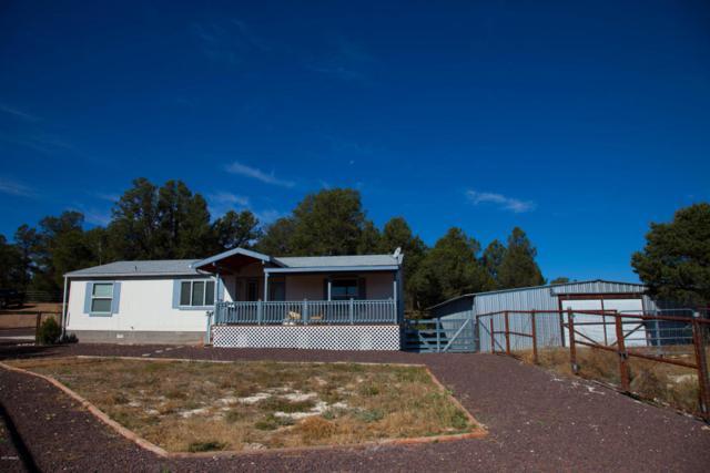 3201 Tonto Drive, Overgaard, AZ 85933 (MLS #5672418) :: The Daniel Montez Real Estate Group