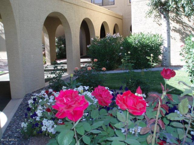 10330 W Thunderbird Boulevard B205, Sun City, AZ 85351 (MLS #5672492) :: Private Client Team